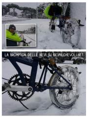 brompton e neve